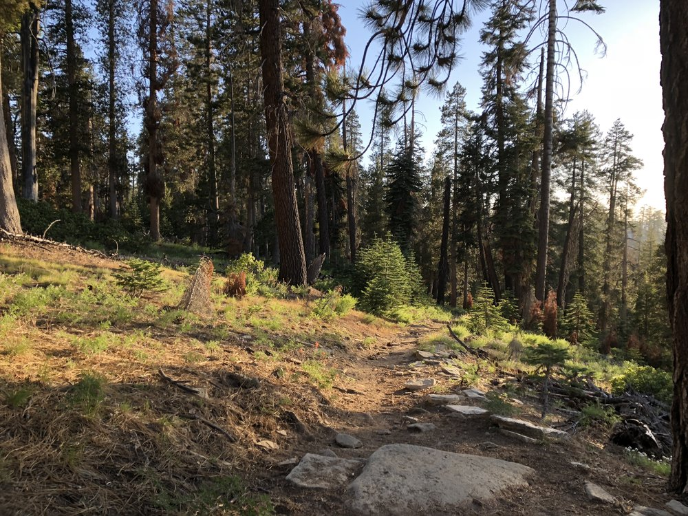 Trail to Weaver Lake