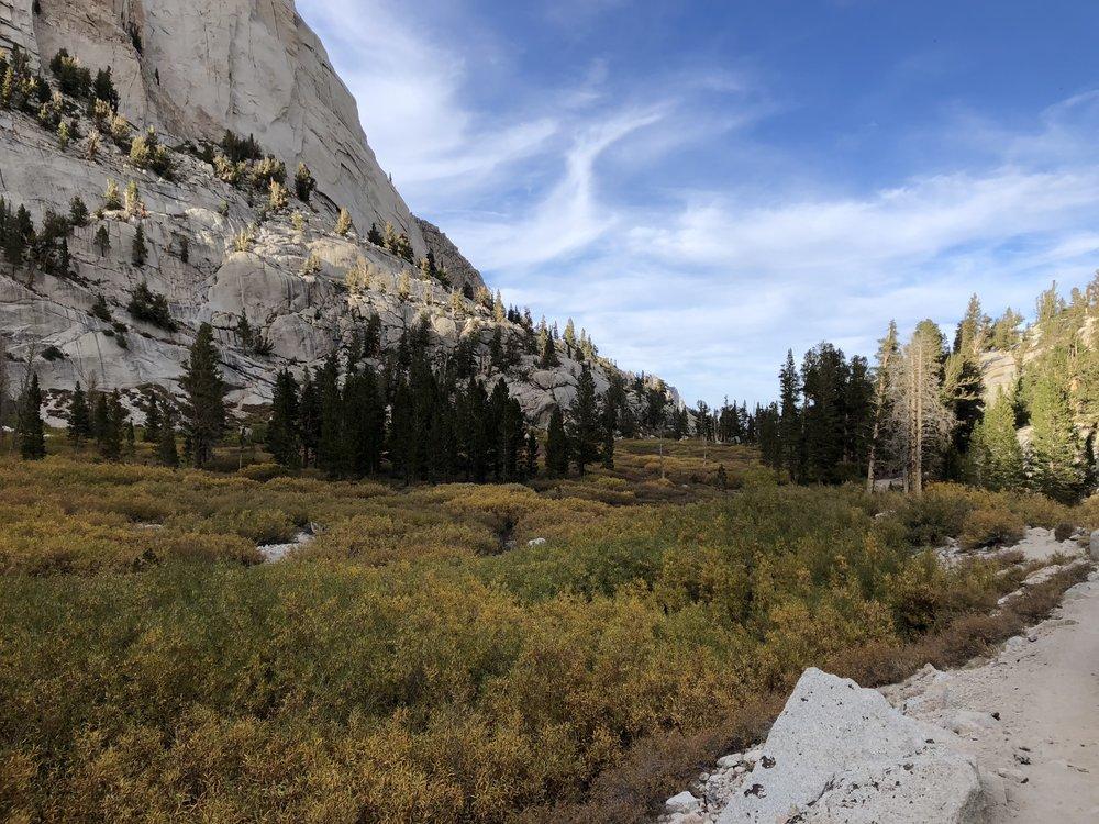 Meadow Below Outpost Camp.JPG