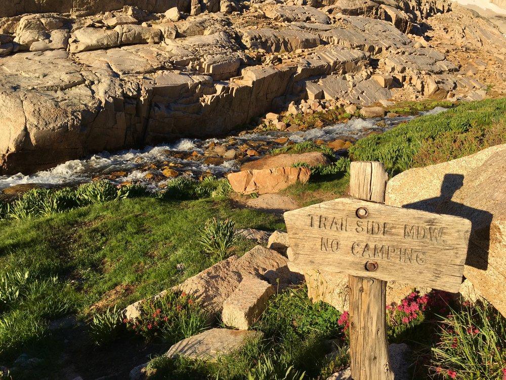 Trailside Meadow sign.JPG