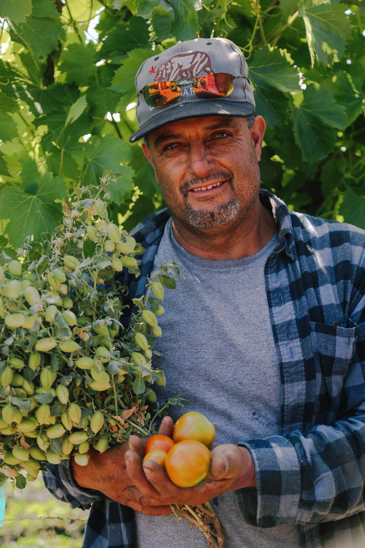 kendra-aronson-julias-juices-FARM-49.jpg