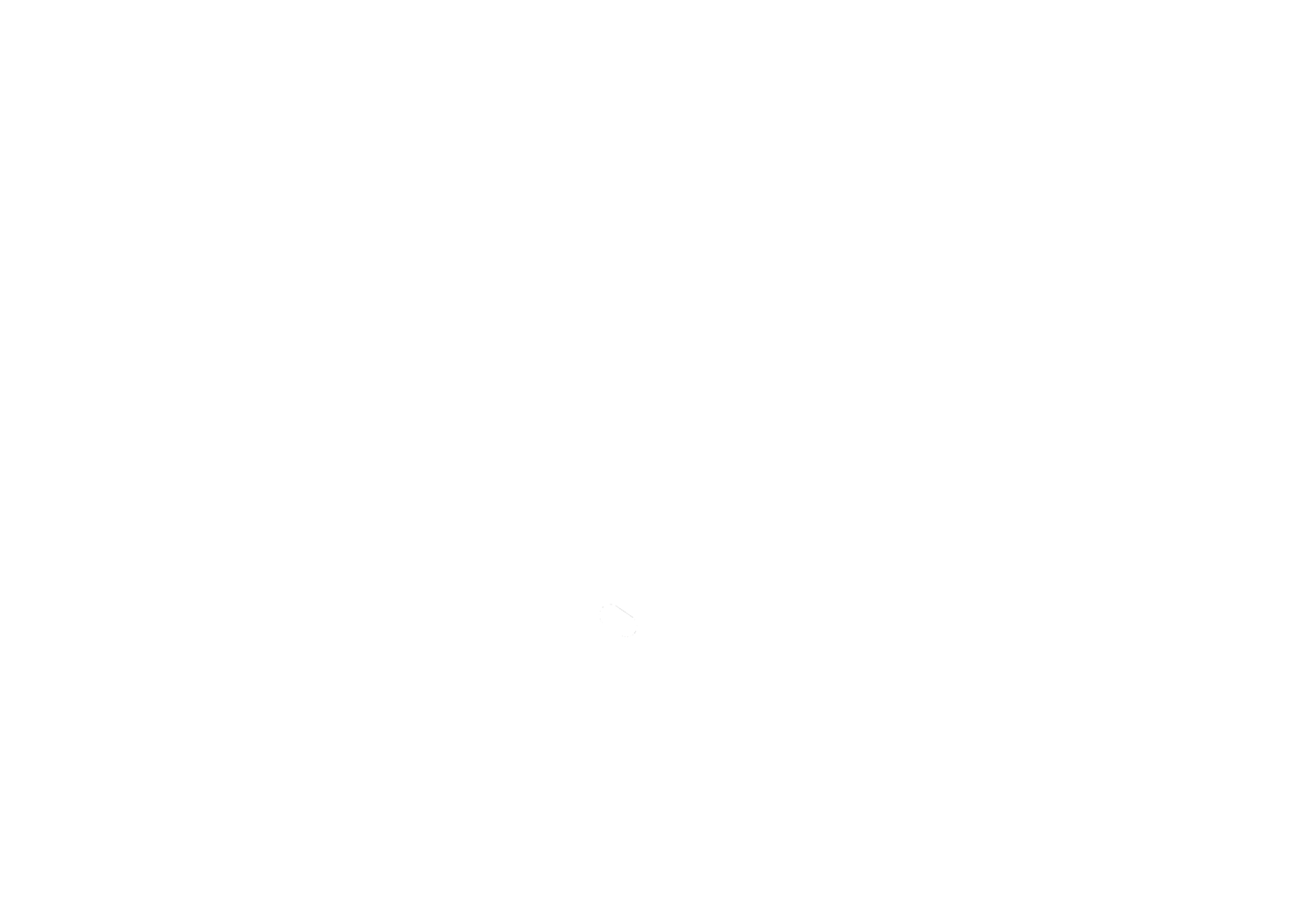 That Singapore Beer Project
