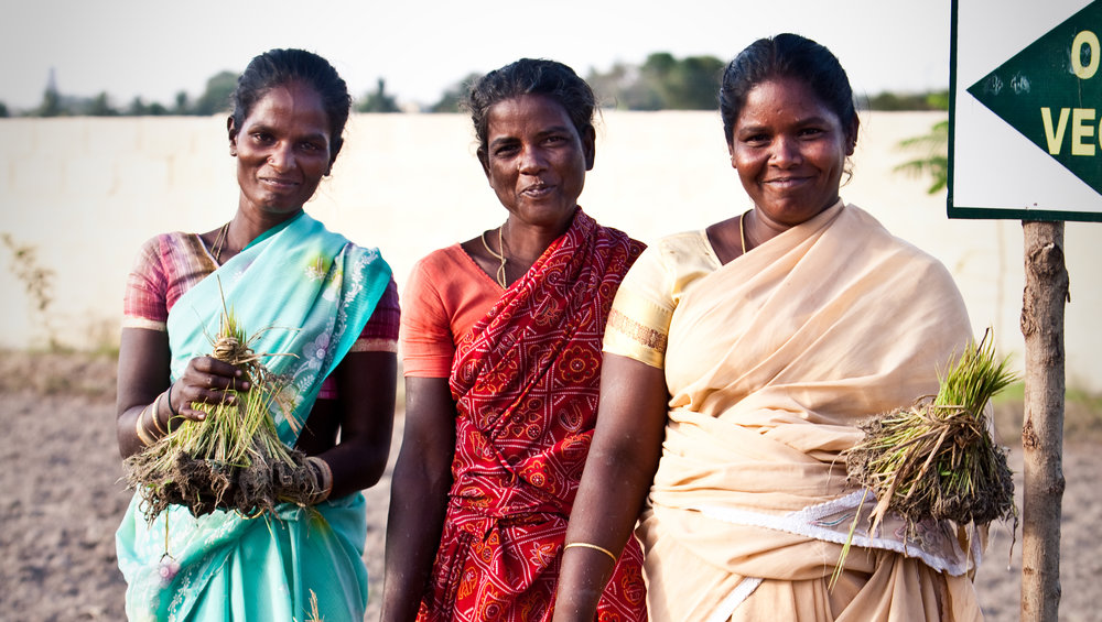 Kvinnor i Indien 1.jpeg