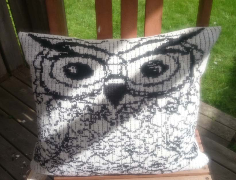Owl pillow 2016-0707.jpg