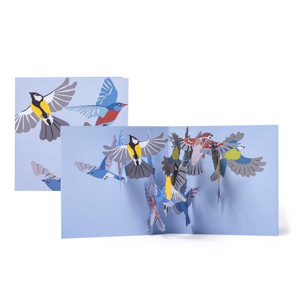 Tango-Small-Birds_MaikeBiederstaedt.jpg