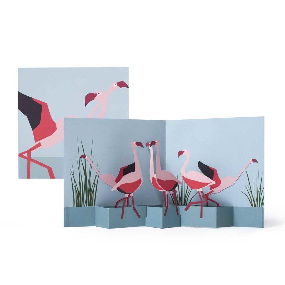 Tango-Flamingos_MaikeBiederstaedt.jpg