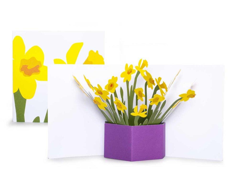 Pop-up-card_2toTango_Flowers_Daffodils_Biederstaedt_1200x850px.jpg