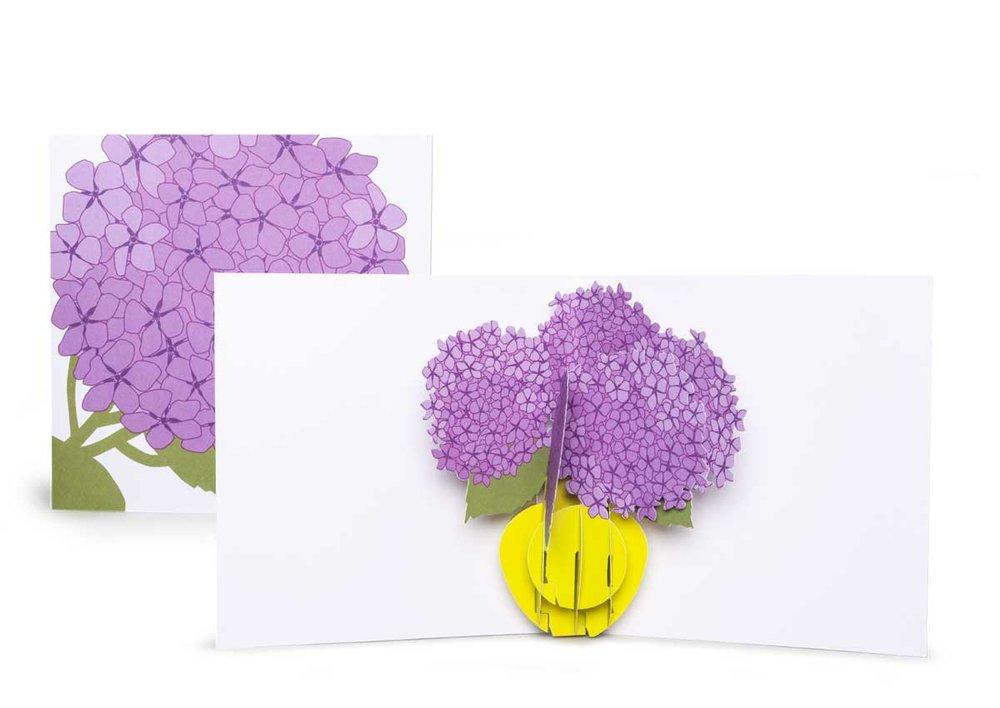 Pop-up-card_2toTango_Flowers_Hydrangea_Biederstaed_1200x850px.jpg