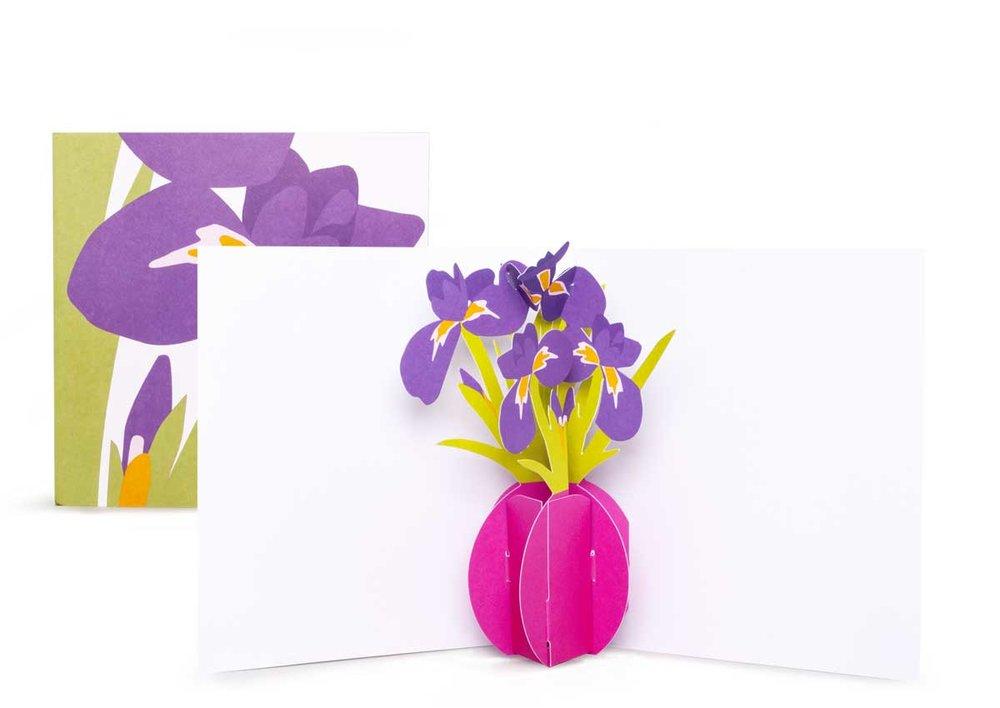 Pop-up-card_2toTango_Flowers_Irises_Biederstaed_1200x850px.jpg