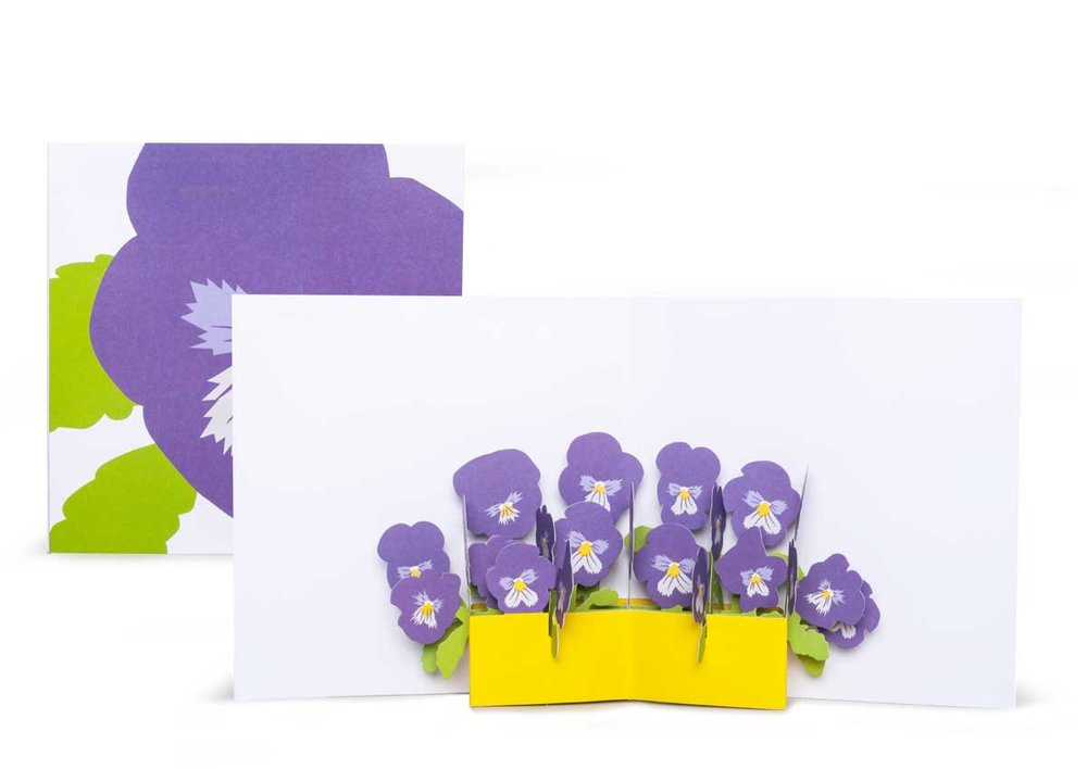 Pop-up-card_2toTango_Flowers_Pansies_Biederstaedt_1200x850px.jpg