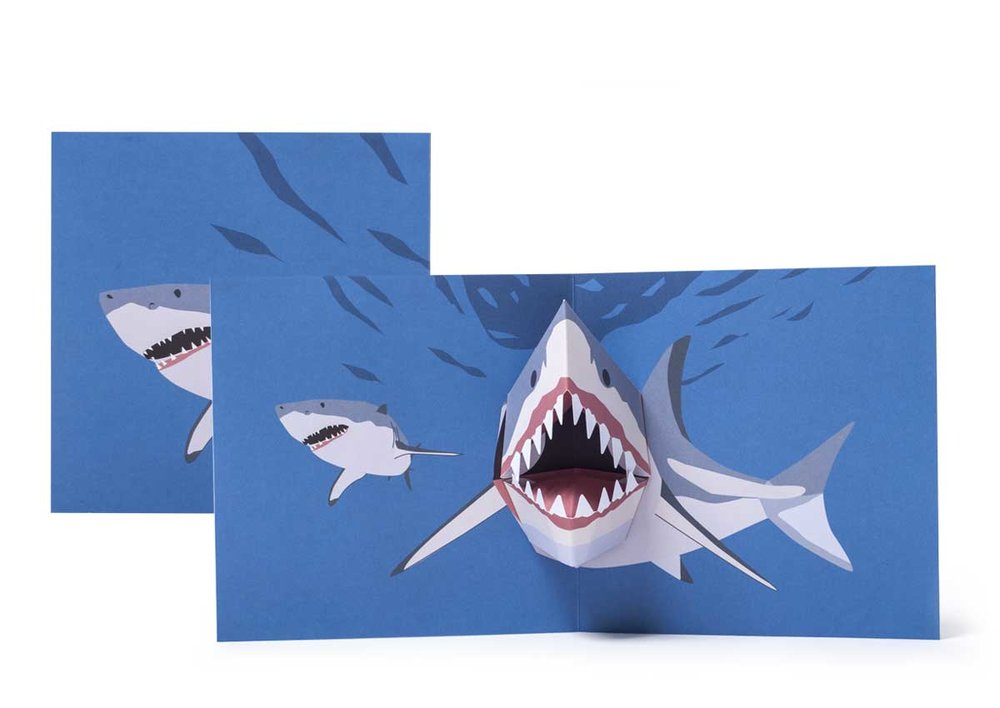 Pop-up-card_2toTango_SeaCreatures_Sharks_Biederstaedt_1200x850px.jpg