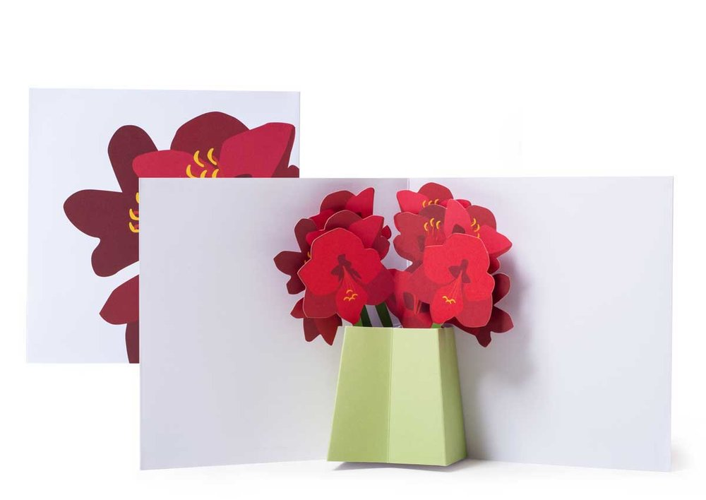Pop-up-card_2toTango_Flowers_Amarylis_Biederstaedt_1200x850px.jpg