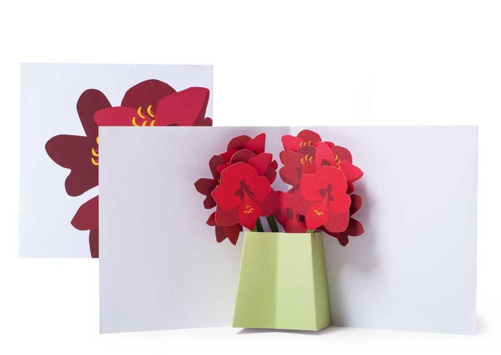 Pop-up-card_2toTango_Flowers_Amarylis_Biederstaedt_1200x850px.jpg