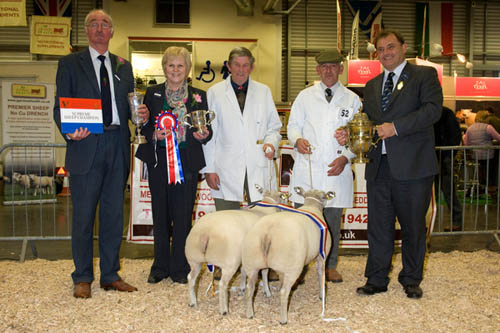 Smithfield sheep champions 2011, David and Linda Wadland's Blue Texel cross lambs
