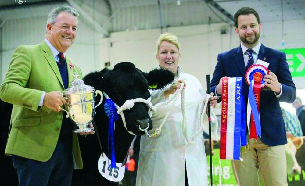 2017 Agrifest Cattle Champion