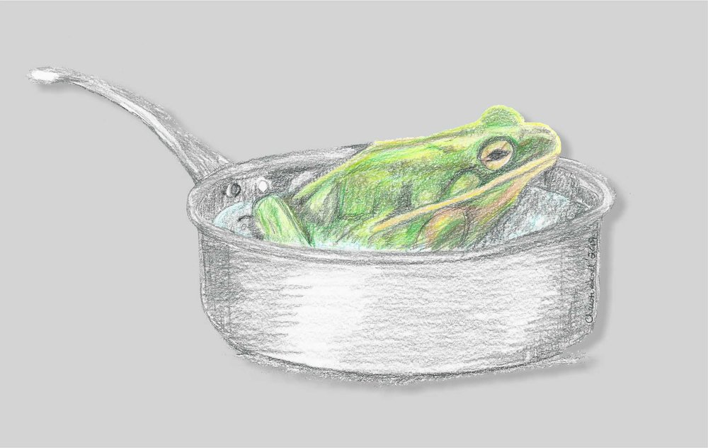 The Fable of the Frog in hot water. A frog placed in hot water will jump out, but if you heat it slowly, the frog will boil alive.