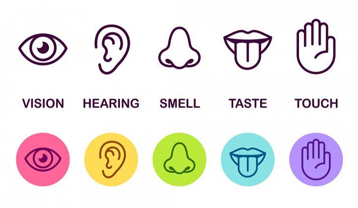 shutterstock-five-senses.jpg