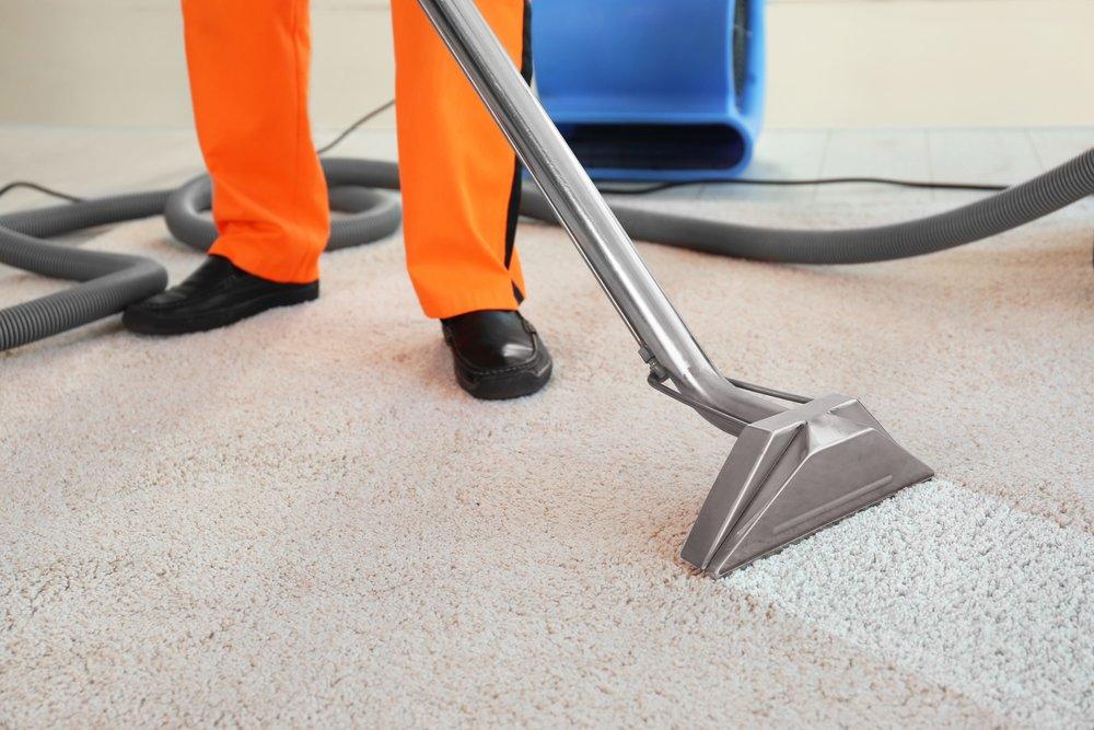 We Clean Brighton - Carpet Cleaners