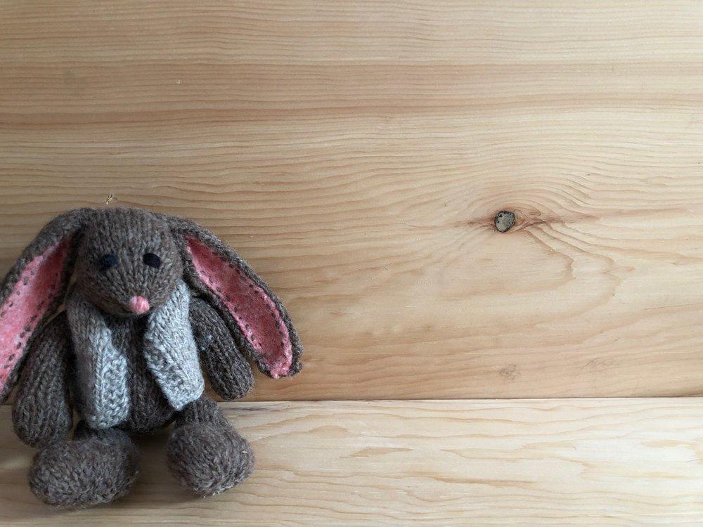 bunny on wood.jpg