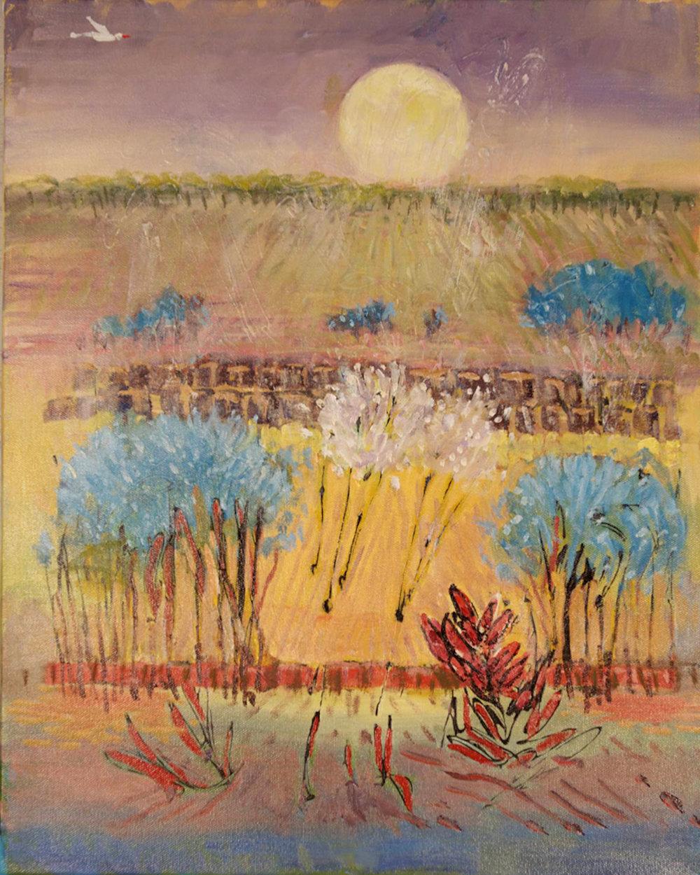 Texas Sunrise, 20 x 16, oil on canvas