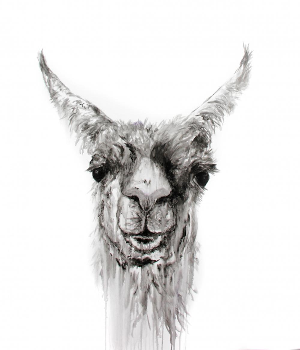 Nemorio, 51 x 45, acrylic on canvas