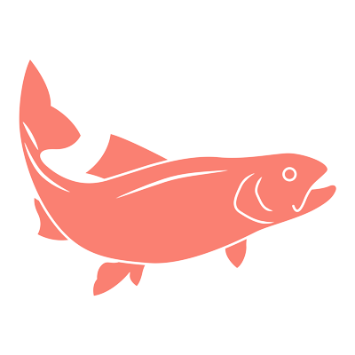 Omega-3-with-Salmon---Food-Mood.png