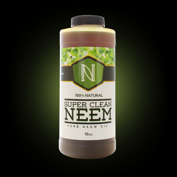 Neem transparent.png