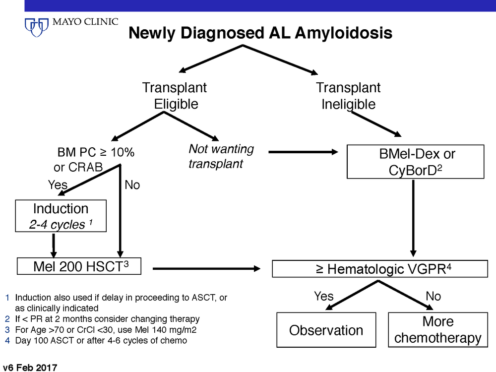 AL Amyloidosis Dx-Tx_Page_5.png