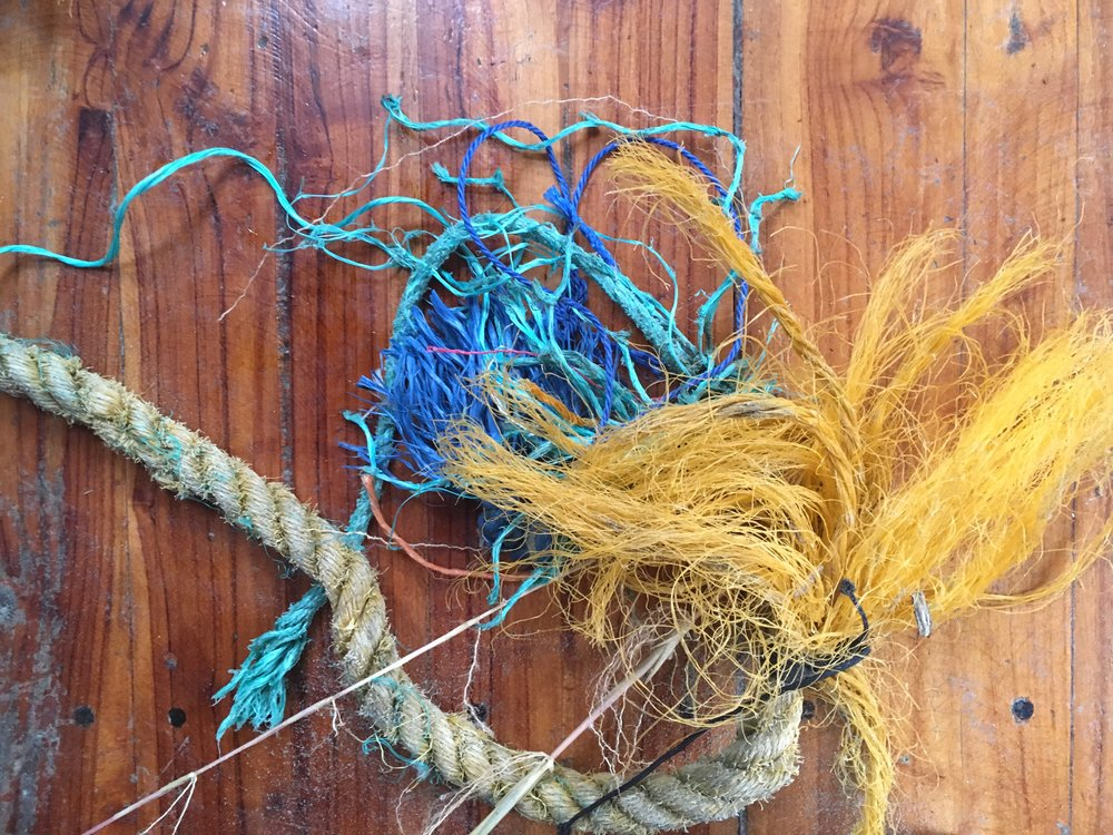Fishing ropes I found on the beach