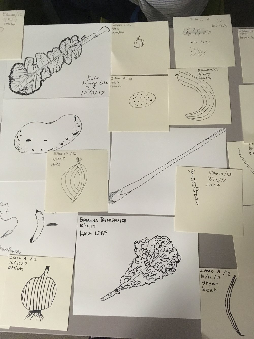 teen drawings of veggies