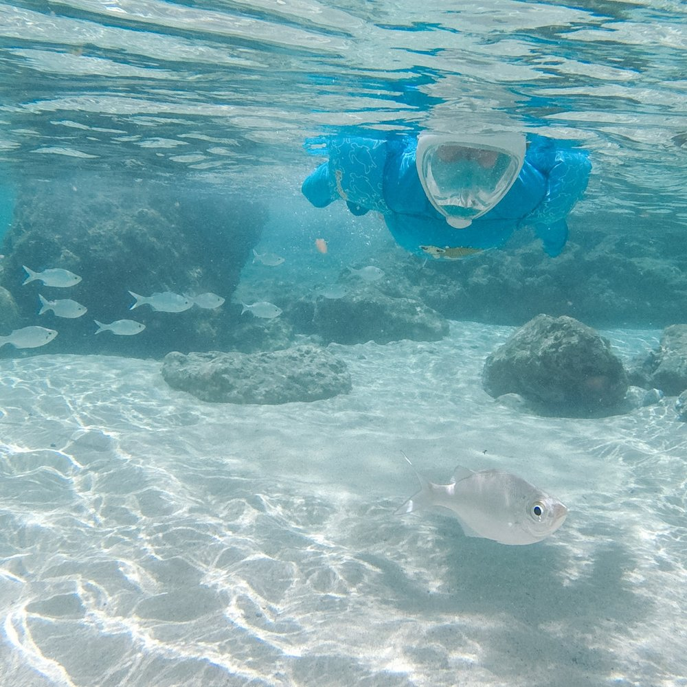 Gear for Snorkeling with Young Children  Headed to the beach? There's no reason your kids can't snorkel with you if you take the right gear along.