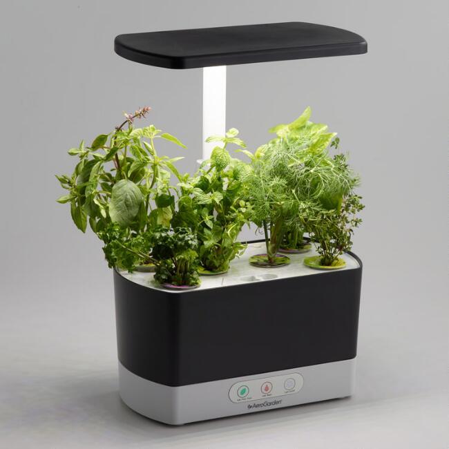 Tabletop Herb Garden , World Market | $99