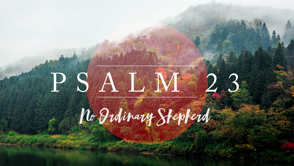 Psalm 23: No Ordinary Shepherd - Encountering God through the season of Lent