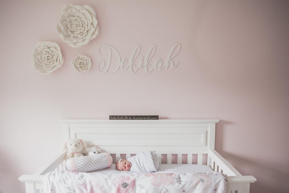 Newborn lifestyle maternity studio Session Cara Peterson Photography Rockford IL-4.jpg