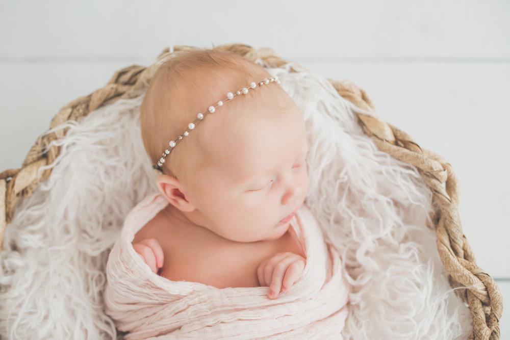 Oaklinn Newborn Studio Session Cara Peterson Photography Rockford IL -1.jpg