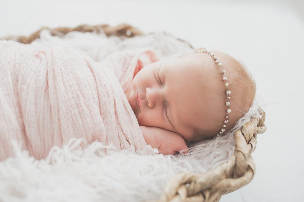 Oaklinn Newborn Studio Session Cara Peterson Photography Rockford IL -3.jpg