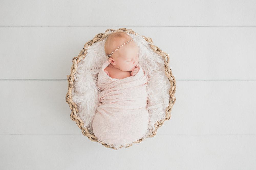 Oaklinn Newborn Studio Session Cara Peterson Photography Rockford IL -2.jpg