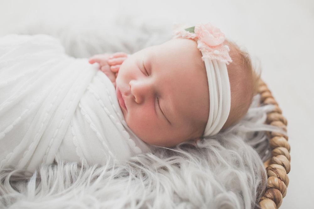 Oaklinn Newborn Studio Session Cara Peterson Photography Rockford IL -6.jpg