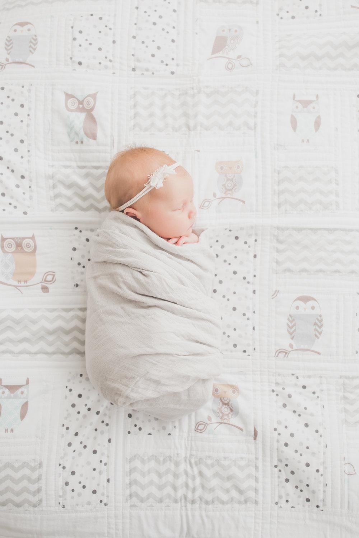 Oaklinn Newborn Studio Session Cara Peterson Photography Rockford IL -7.jpg
