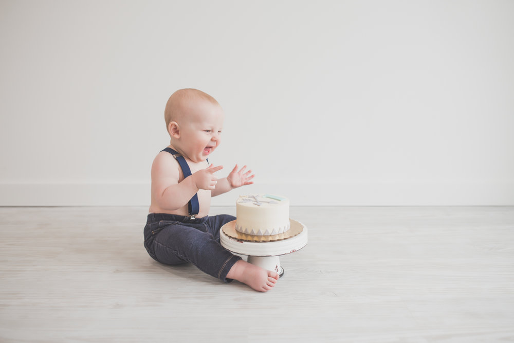 Cade 1 Year Old Cake Smash Milestone Session Cara Peterson Photography Rockford IL -21-2.jpg