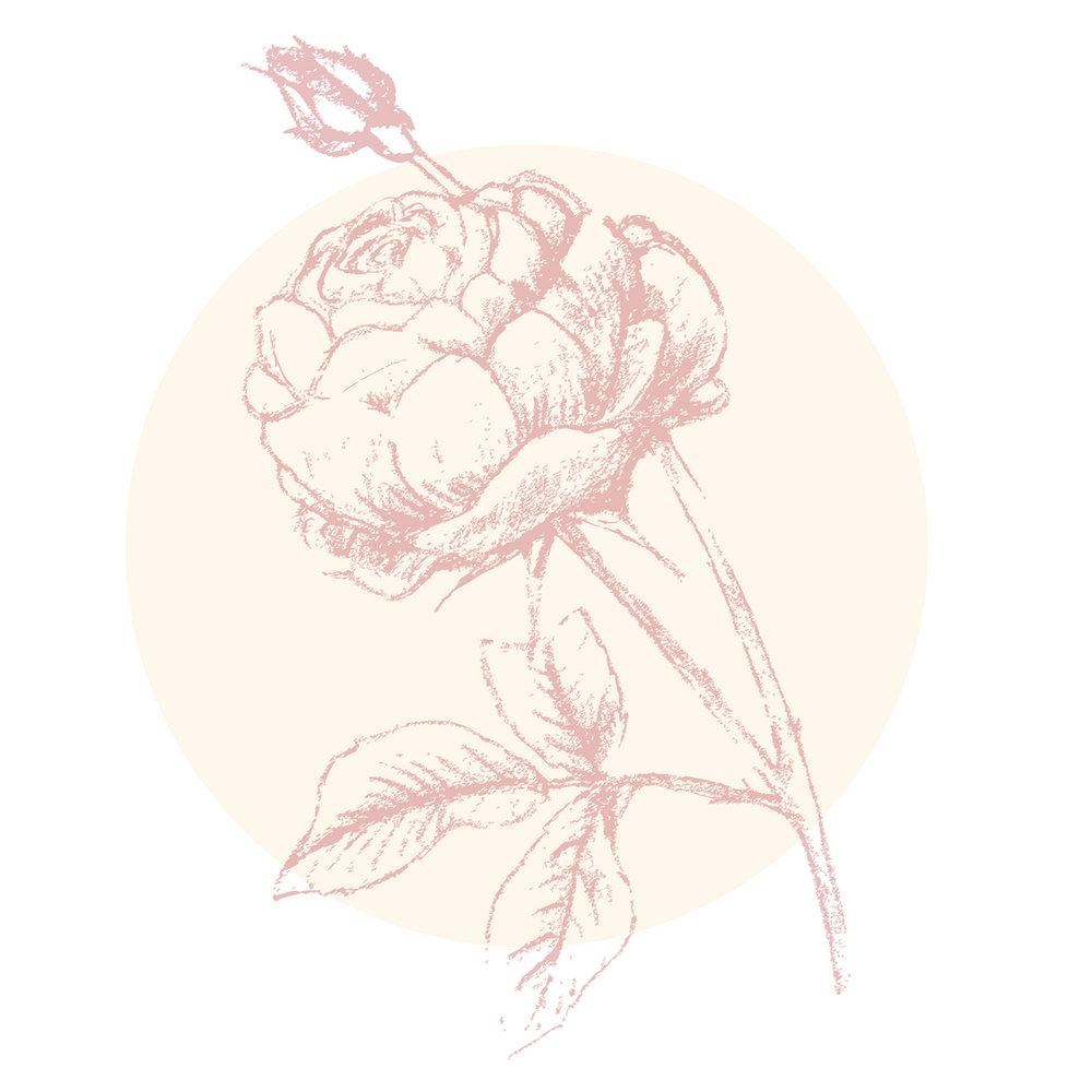 View Full Bloom - 6 month program