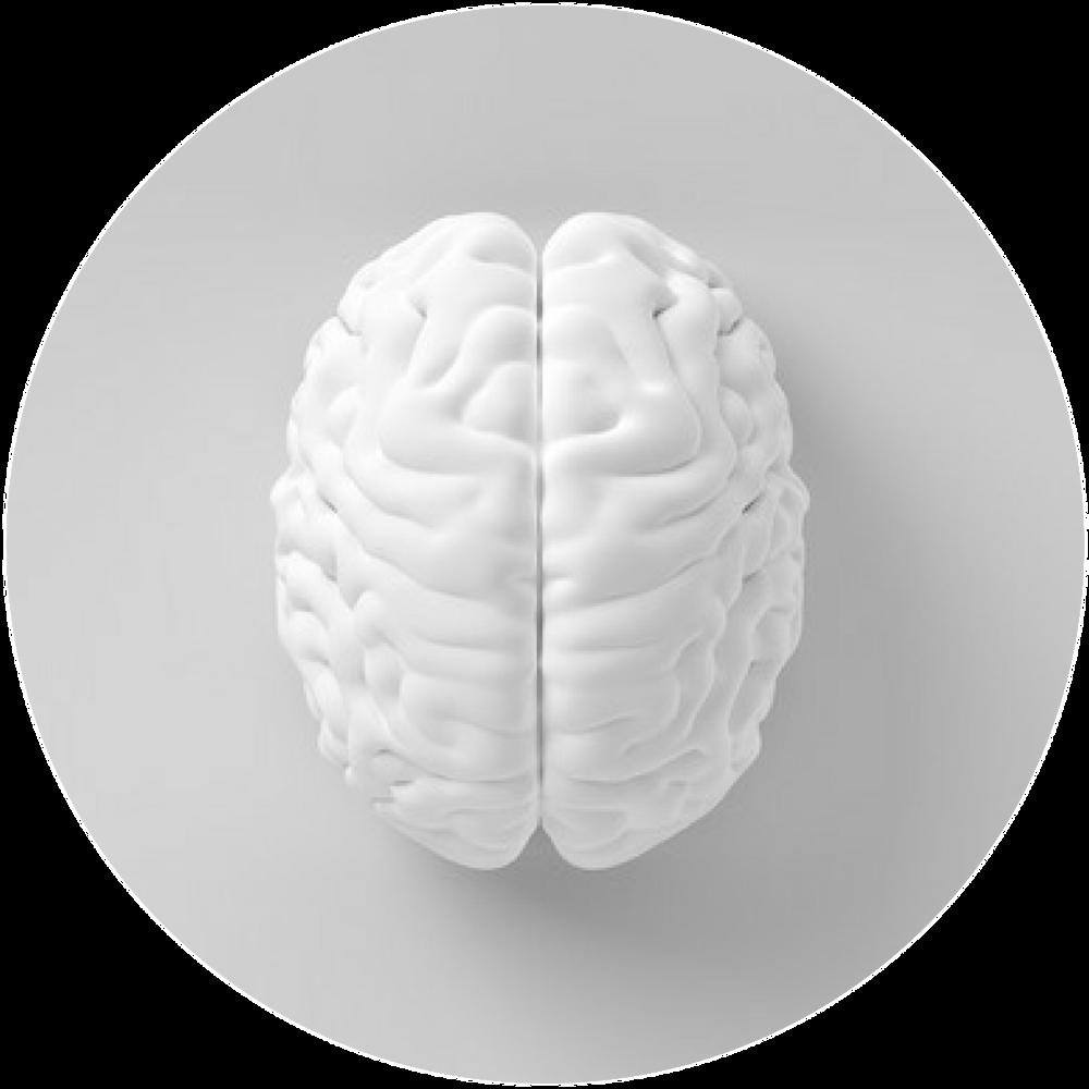 Florence GAILLARD-BIGOT | Neuropsychiatre
