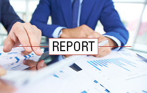 MSR Industry Report - Highlights activity for 23 of the largest holders of the MSR asset. The report includes quarterly risk management results, trends, additional portfolio characteristics and sensitivities for each company's portfolio, and a group summary.Download a sample report or request the most recent report from your MountainView sales rep.