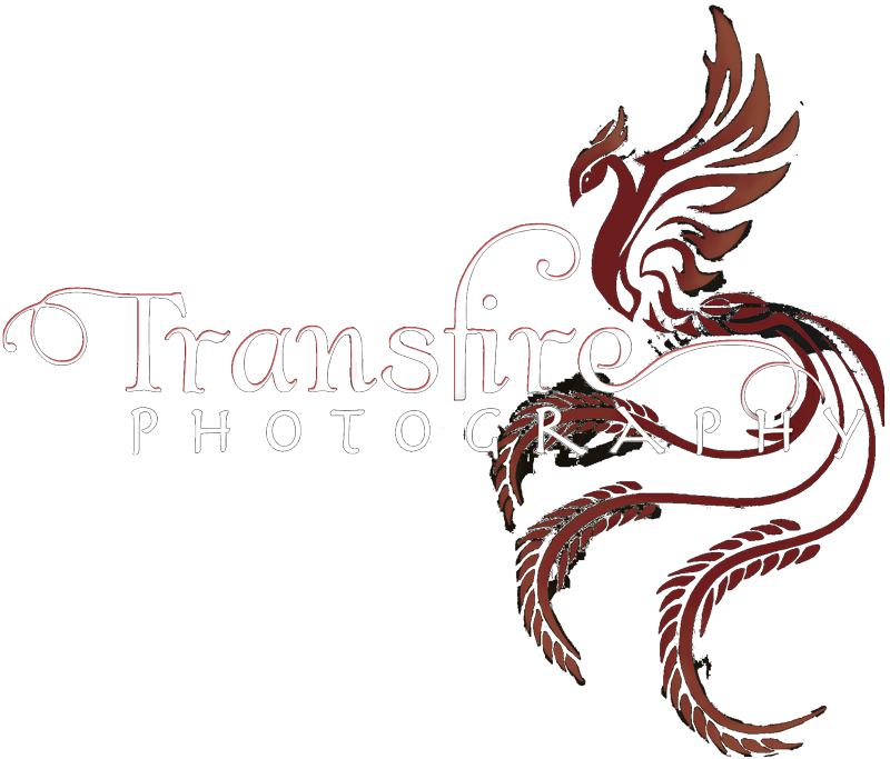 Transfire Photography
