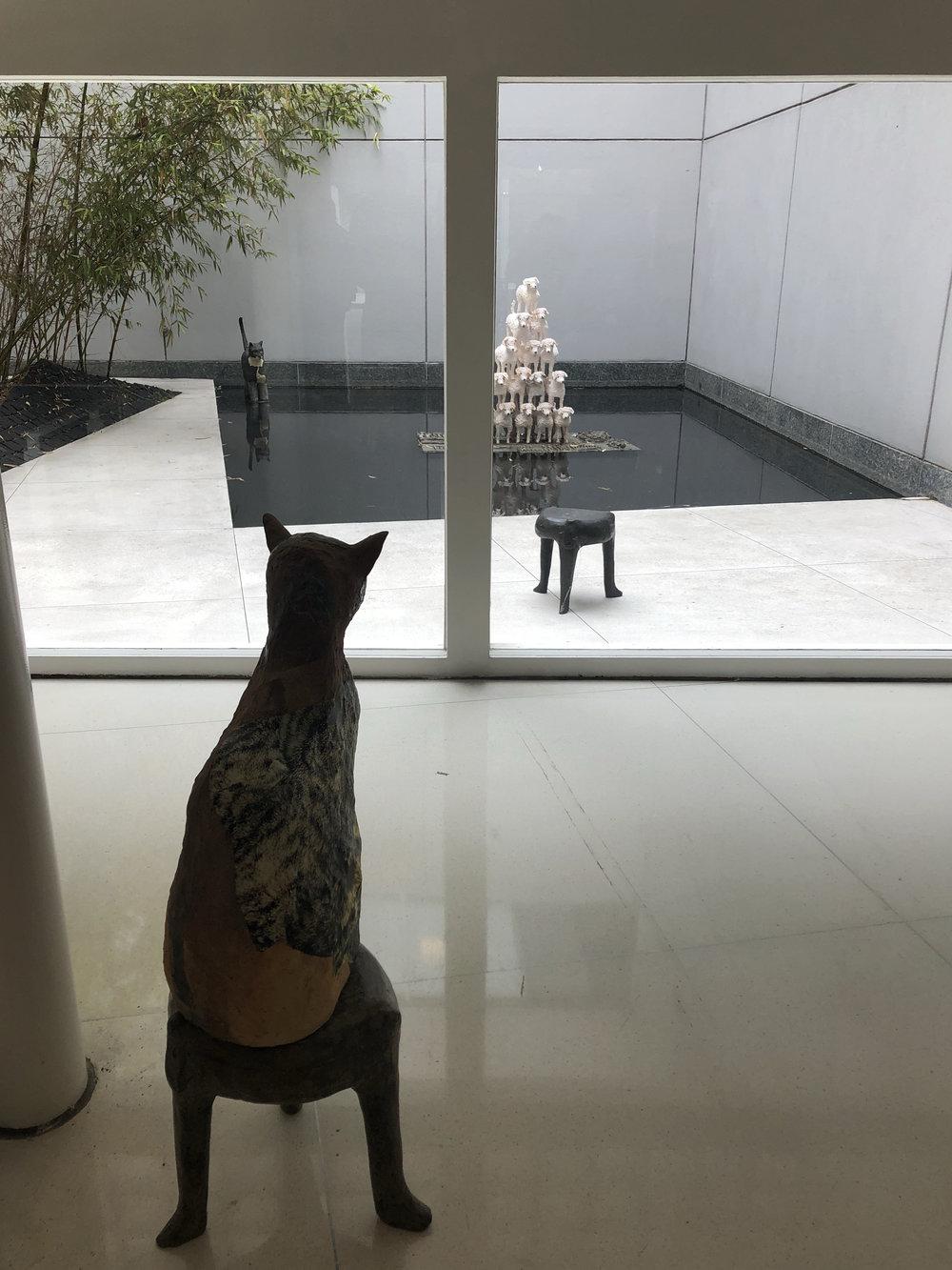 Sahar Khoury, installation view