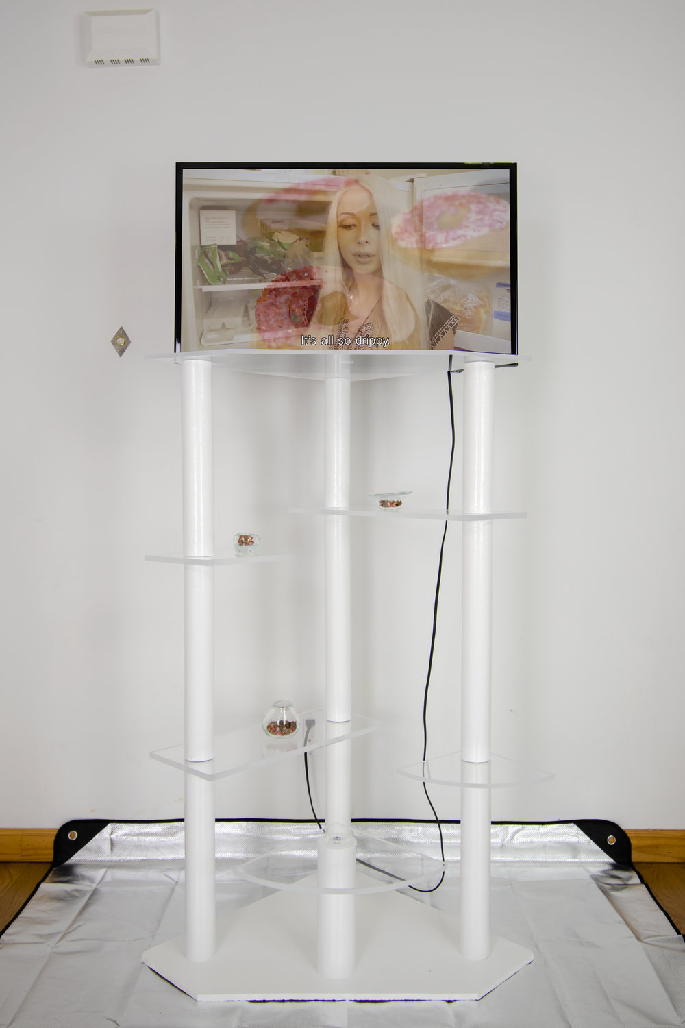 Deidre Sargent,  who do i trust? i trust ME and my donut-shaped brain , 2019, tv mounted on modified cat-tree with polymer shelves, blown glass bowls and cat treats  video duration , 5 minutes and 30 seconds