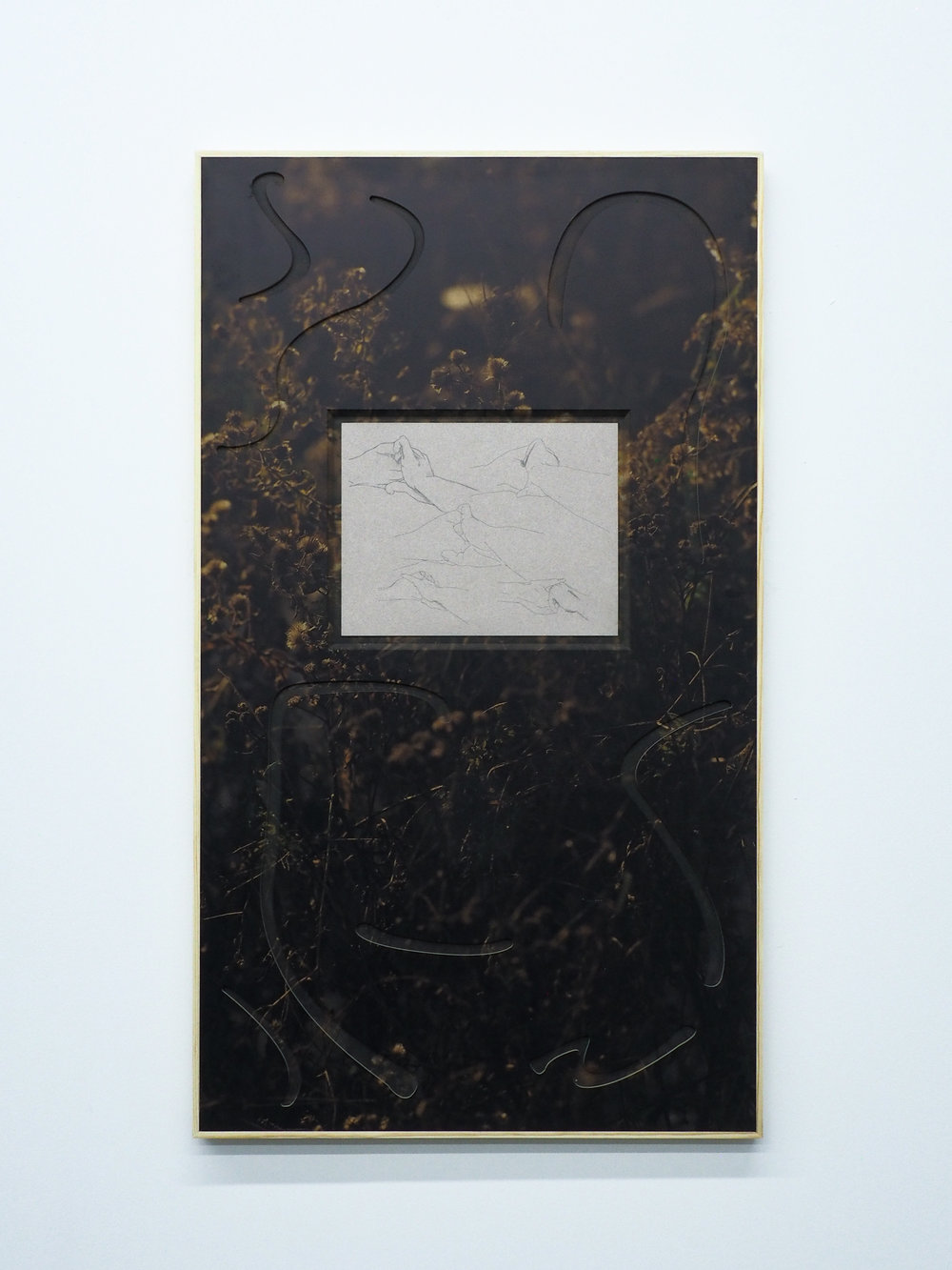"Parker Kay,  Jeanette Island,  2019, UV Print on custom MDF panel, pencil on paper 38.5""x22"""