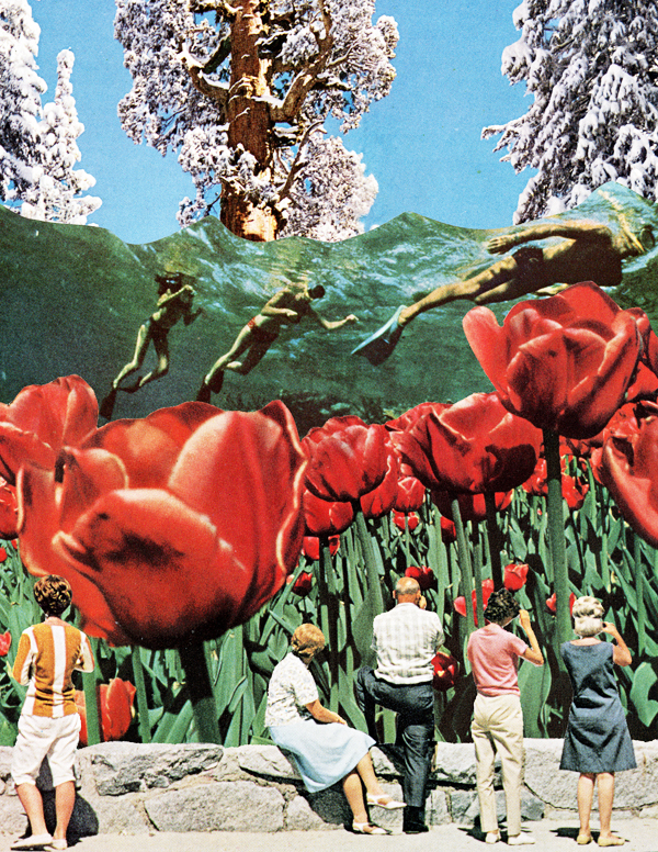 Swimming in Tulips.jpg