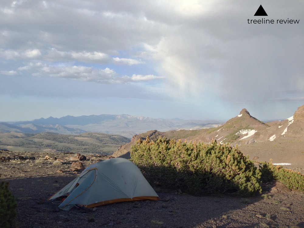 When camping above treeline, sometimes a modest bush may be your best protection from the wind and elements.  Photo by John Carr.