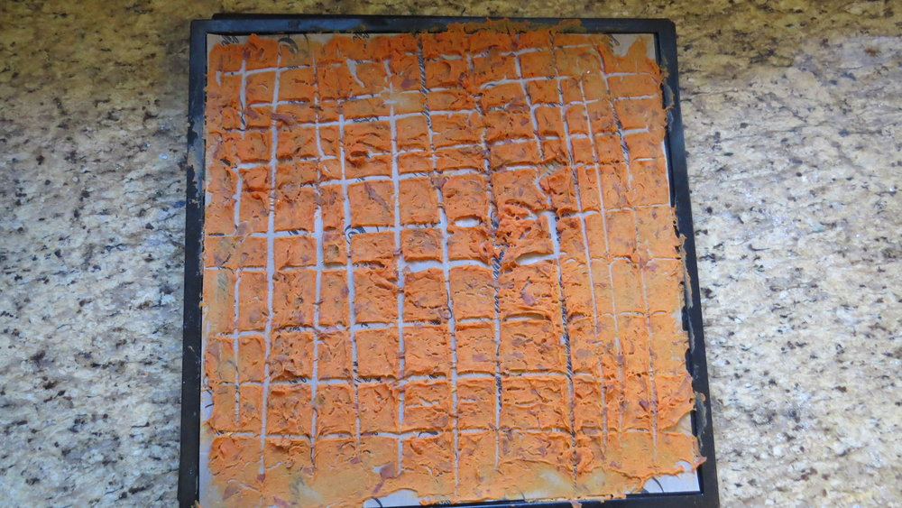 The finished product! We ended up with a thin layer of dehydrated sweet potatoes.   Photo by Liz Thomas.