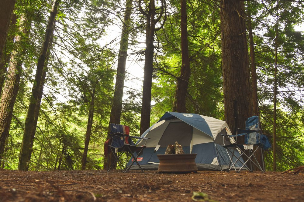 Camping in the redwood forest with the Coleman Sundome and campchairs and a robust firepit.   Photo by    Bobby Burch    on    Unsplash